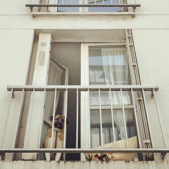 paris_0610_04