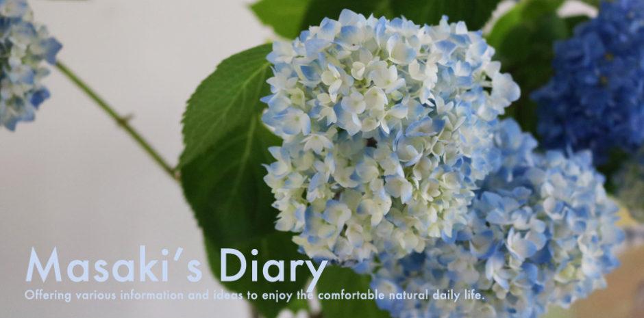 Masaki's diary